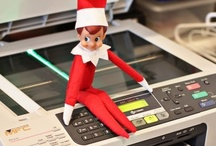 BB: Elf on the Shelf / by Basement Betty's