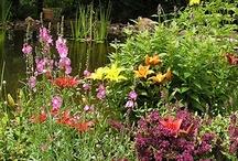 Open Days 2013 / by Garden Conservancy