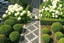 GARDEN / Classic garden and landscape designs, indoor plant keeping and flowering arranging inspiration.