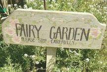 BB: Fairy Gardens / by Basement Betty's