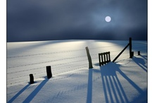 Inspirations: Winter / by CT C