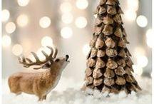 Winter / vánoce, zima
