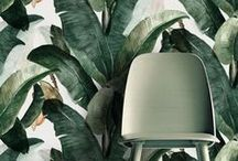 Interior in Green / Ob das satte Grün einer Pflanze oder ein zartes Grün an der Wand - Grün wirkt in den eigenen vier Wänden frisch, belebend und inspirierend.  Green has many shades. A full green of a plant or a pale green on the wall can be so inspiring and fresh.