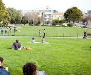 San Francisco's Duboce Triangle Neighborhood / Wondering where to live in San Francisco?   Check out this neighborhood guide featuring our favorite local spots and apartment buildings for rent.
