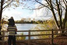 Thrupp Lake, Radley