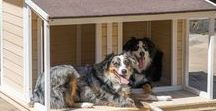 Dog houses / Treat your dog with royalty. Choose the best dog house!