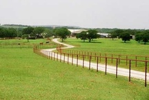 Horse Ranches / Beautiful properties where horses live and play.