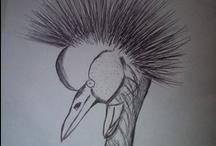 Art / Visual art (pencil and pen)