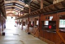 Barn Organization / Check out our barn and tack room organization ideas!