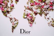 Dior / Christian Dior.