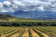 La Rioja, la tierra con nombre de vino / La Rioja, nuestro territorio