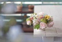 入賞作品「暮らしを彩る植物」のフォトコンテスト / http://greensnap.jp/contest/10
