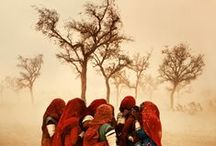 PHOTO Steve McCurry / 1950 - Master of Colour: His career was launched when, disguised in native garb, he crossed the Pakistan border into rebel-controlled areas of Afghanistan just before the Soviet invasion. When he emerged, he had rolls of film sewn into his clothes. Those images, which were published around the world, were among the first to show the conflict.