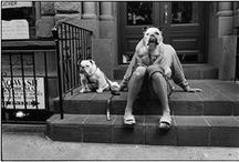 "PHOTO Elliott Erwitt / 1928 - is an advertising and documentary photographer known for his black and white candid shots of ironic and absurd situations within everyday settings— a master of Henri Cartier-Bresson's ""decisive moment""."