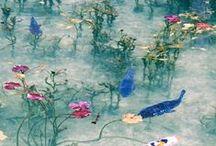 入賞作品『全国ボタニカルスポット』フォトコンテスト-2015秋- / http://greensnap.jp/contest/25