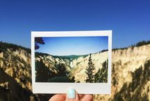 Yellowstone Forever / Everything Yellowstone National Park