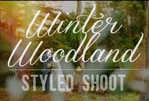 Winter Woodland Photoshoot / Whimsical winter shoot styled by Meant To Be, photographed by Lavara Photography, with flowers by Judith's Floral Design and candy by Magnolia Kitchen!