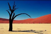 Southern Africa / Afrique Australe / Nambia, Botwana, South Africa