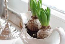Woon inspiratie...☆ / Leuke ideeën voor in huis...