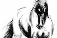 T-tekenen/schilderen-paarden