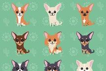 About Chihuahuas
