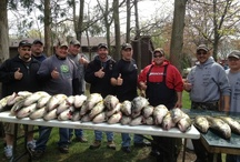 Fishing vs Catching <*)))>< / Sport fishing at Put-in-Bay and surrounding lake Erie rivals that on any lake in the country, Walleye, yellow perch, smallmouth bass and steelhead trout fishing, you couldn't ask for a better or more versatile fishery than Lake Erie and the shoals around Put-in-Bay.