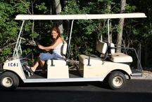 Golf Carts, Bikes, and Mopeds oh my! / Renting a golf cart is the easiest, most fun and most popular way to get around the island. Put in Bay was made to be traveled by golf cart! Golf carts are fun for kids and adults alike and are a unique way to get around. Try something different and rent one for your transportation needs during your stay on Put in Bay Ohio. Bikes are another great way to see everything the island has to offer. The largest,  Delaware Golf Cart and Bike Rental, is located in the heart of downtown Put-in-Bay.