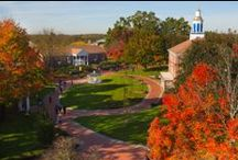 Campus Photos / Check out our picturesque campus! / by Western New England University