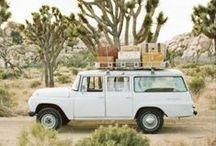 traveling bug / Inspiring travel destinations