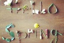 春 『spring』 / Haruは恋の予感。。。