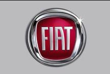 Fiat / Ideas for vehicle wraps and colour change
