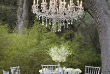 Dining Alfresco / by Jennifer Golini