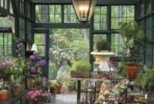Conservatory / by Jennifer Golini