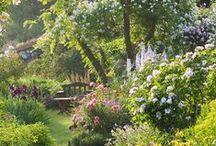 ogrodowe inspiracje / pomysły na przyszły ogród