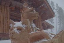 Magnificent Mountain Lions / Take a closer look at the majestic mountain lions carved by Pete and Ryan for Pioneer clients Troy and Melinda Callender.