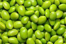 1000 shades of green