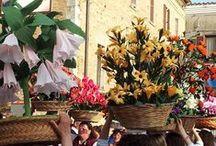Festa de lu Banderese 2015 - Bucchianico / Festa de lu Banderese 2015 - Bucchianico