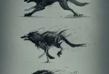 Wolves ❤️ / ❤️
