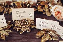 Planning the Wedding. / All things Weddings.  / by Brenna Rose