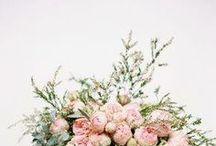 Flowers / by jacquelyn | lark & linen