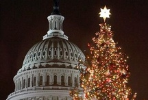 On the road to DC! / by Capitol Christmas Tree 2012