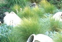 Dingen over tuinieren die ik leuk vind