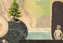 We're All in this Together / The US Forest Service, Choose Outdoors and many partners will use the Capitol Christmas Tree's tour of Colorado and the US to raise funds for reforestation projects in areas burned by this summer's wildfires. http://www.chooseoutdoors.org/