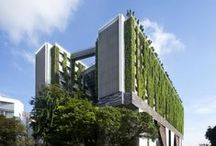 Green architecture / Building green city spaces