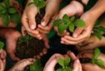 Herbology :)