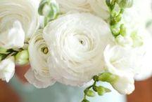 kwiaty / Kwiaty to wdzięczny temat malarski. Wydaje mi się, że są pomostem między naturą a sztuką