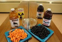 Halloween & Fall Fun / ghoulishly great science, hands on, active and passive activities to do in the fall and Halloween season