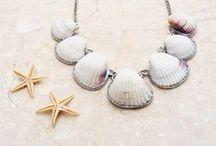 Seashells decorations