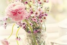 Flower|Bouquet