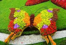 Garden   { Art } / by * Donatella  * * Mugnai *